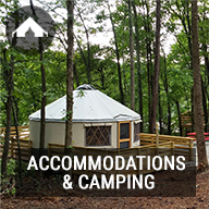 Accommodations & Camping