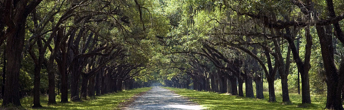 Wormsloe State Historic Site