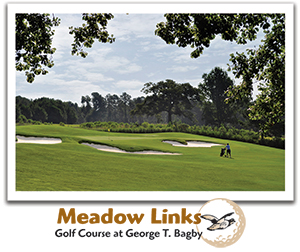 Meadowlinks Golf Course