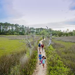 Hiking at Skidaway Island