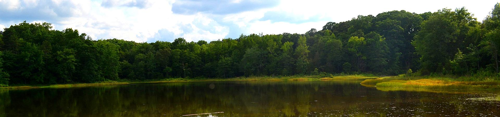 pond at Elbert County WMA