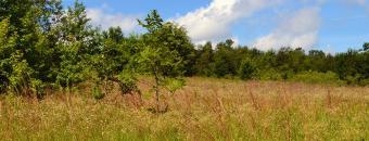 Burke County VPA Field