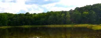 Elbert County WMA Pond