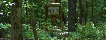 Rich Mountain Target in Woods