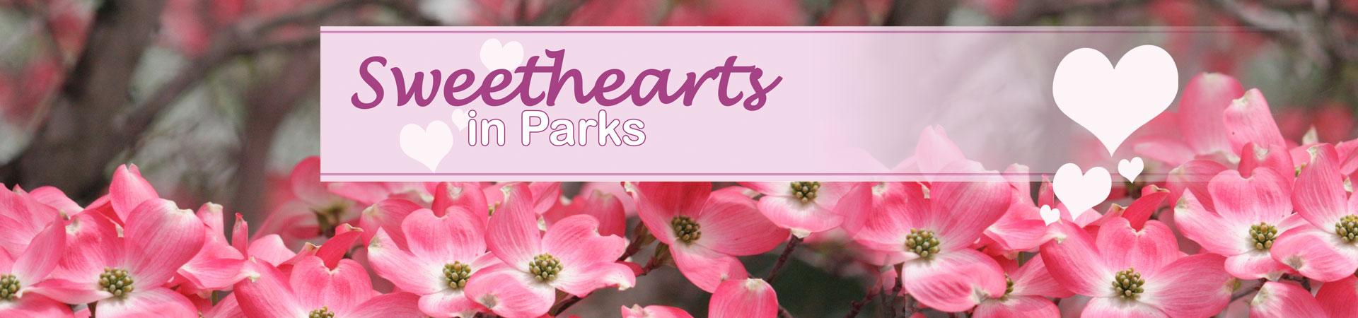 Sweethearts in Parks Promotion image